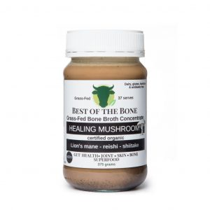Healing Mushroom 01 1024x1024