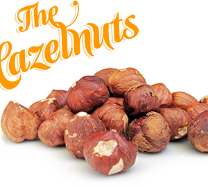 Nuts123