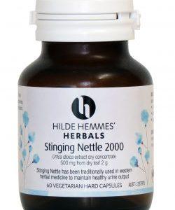 Stinging Nettle 60 Capsules Jpg 250x366